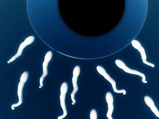 Sperm 8