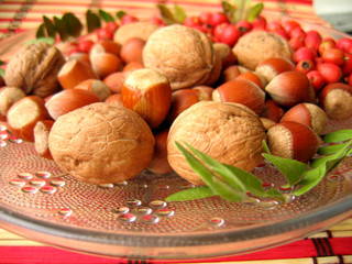 hazelnuts, walnuts and haw assorted on the plate