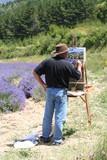 Fototapety Peintre et lavande