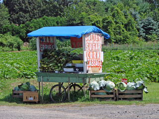 Small Rural Farmstand