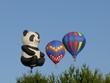 Leinwandbild Motiv montgolfières (12)