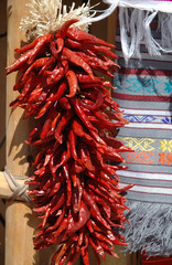 Chili peppers, New Mexico, USA