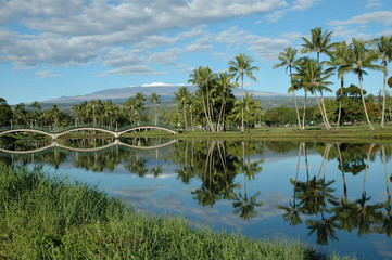 Wailoa Pond, Hilo, Hawaii USA