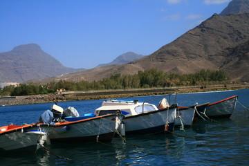 barcas de pesca en el puerto de San Nicolas, Gran Canaria
