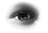 halftone eye / vector . A vector halftone, based on my photo. poster