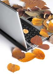 Autumn laptop. Nostalgia.