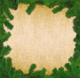 square spruce twig frame poster