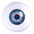 Eye eyeball