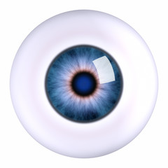Eye eyeball