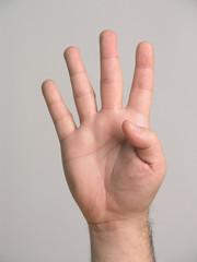 4 fingers - 2