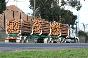 Log semi truck