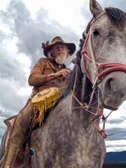 Cowboy on a horseback
