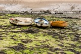 3 Boats stranded amongst the seaweed at low tide poster