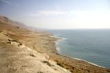 arid dead sea coastline israel poster