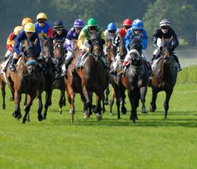 peloton de chevaux lors d'une course plate