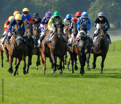 Aluminium Paardrijden peloton de chevaux lors d'une course plate