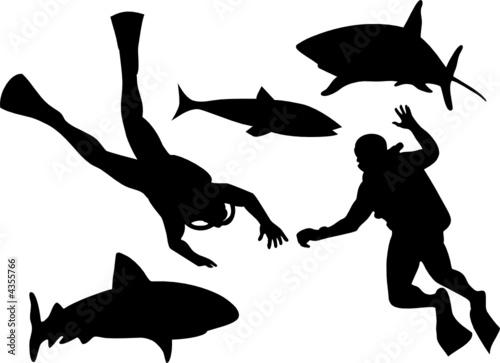 Scuba Diver Mask Scuba Diver And Shark