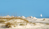 Oceanside Sand Dune with Sailboat in Distance poster