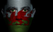 Welsh Flag - Male Face
