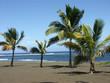 plage tropicale...sable noir et cocotiers