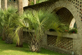 small palmetto trees and arched walkway poster