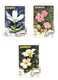 Soviet stamps with flowers poster