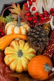 Thanksgiving Fall Harvest poster