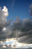 Rays of Sunshine poster