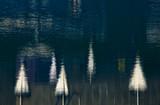 reflection of umbrella poster