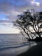 dusk on the beach - la haina, maui
