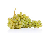 An isolated cluster of white grape poster