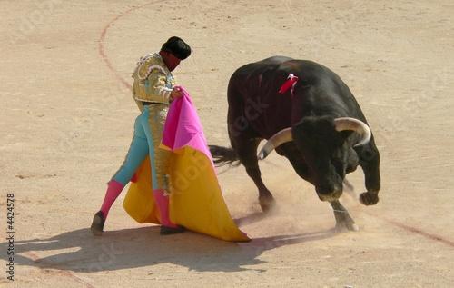 Staande foto Stierenvechten corrida des vendanges