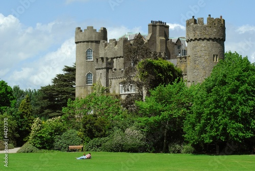 Malahide Castle 2 - 4427370