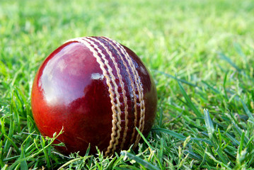 New cricket ball on grass.