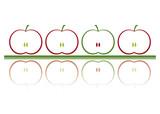 mela rossa e verde poster
