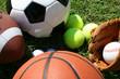 Sports Equipment - 4437997