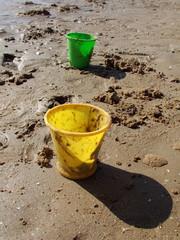 sceaux sur la plage