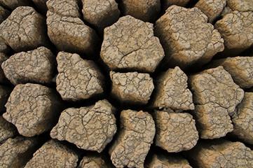 Desertificazione,siccità