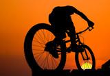 Fototapety mountain biker silhouette