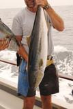tuna fisherman poster