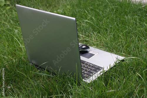 notebook on green grass