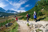 Trekking in Tatra mountains poster