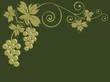 Tralcio di vite con grappoli d'uva