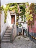 Ravello alley stairs climber  autumnal poster