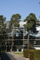 Büro Glashaus