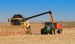 Leinwanddruck Bild - récolte du maïs à grains