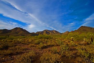 Scottsdale Arizona - Desert View