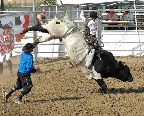 Bull & Rider - 4493999