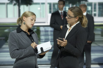 businesswoman in discussion