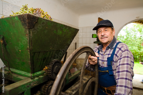 Vintner pressing grapes